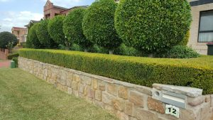 Landscaping Services Castle Hill
